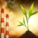 Ecology in danger