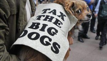самые странные налоги в мире