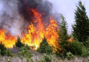 Штрафы за несоблюдение правил пожарной безопасности увеличат