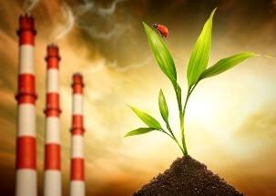 Судебно-экологическая экспертиза: понятие и задачи