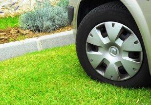 Госдума отменит штрафы за парковку автомобилей на клумбах