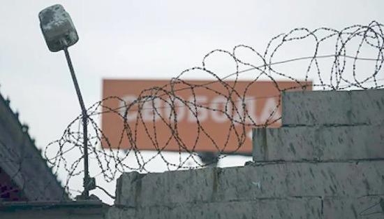 amnistiya