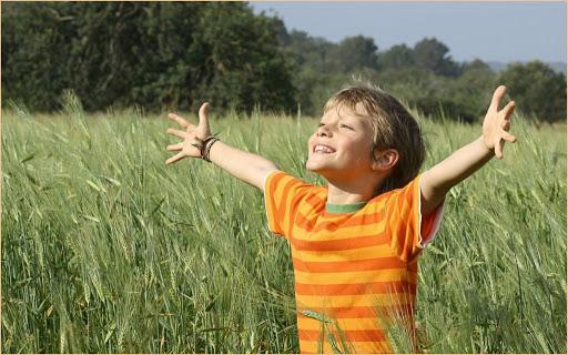 Земля, хозяйство, дети: законопроекты недели