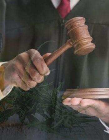 осуждение за сбыт наркотических веществ